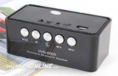 Loa Nghe Nhạc Bluetooth Ws-655