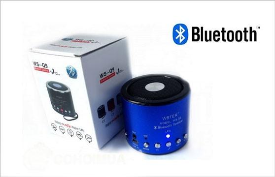 Loa Nghe Nhạc Bluetooth Mini Ws Q9