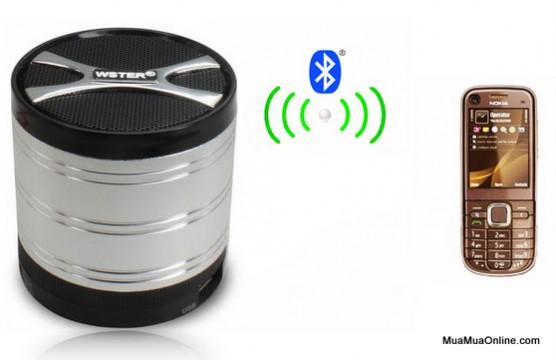 Loa Nghe Nhạc Bluetooth Ws-199