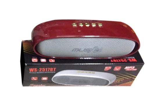 Loa Nghe Nhạc Bluetooth Ws 2517 Nghe Hay