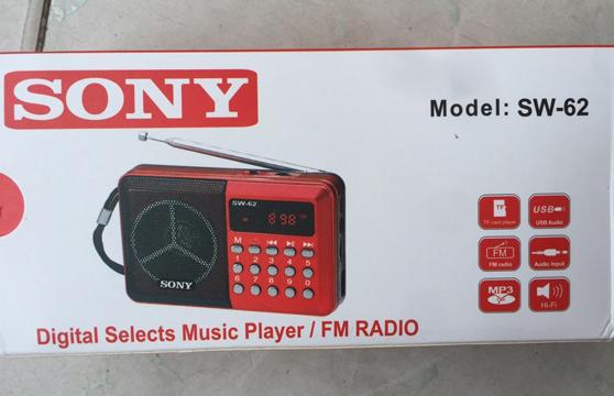 Loa Nghe Nhạc Sony SW-62