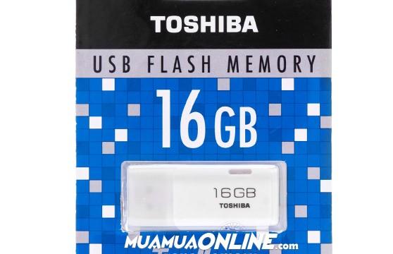 Usb Hayabusa Toshiba 16Gb Chính Hãng Fpt