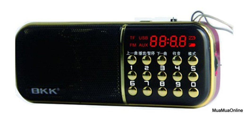 Loa Nghe Nhạc Usb Thẻ Nhớ FM BKK 851