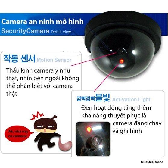 Camera Mô Hình Chống Trộm Cao Cấp
