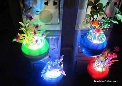 Đèn Ngủ Cảm Ứng Ánh Sáng Hình Chậu Hoa