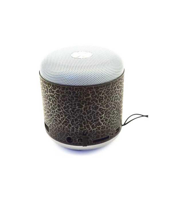 Loa Nghe Nhạc Bluetooth WS Y93
