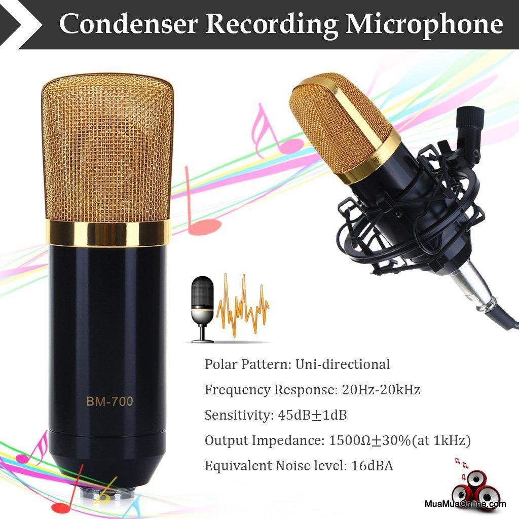 Micro Thu Âm Bm-700 Cao Cấp Chuyên Nghiệp